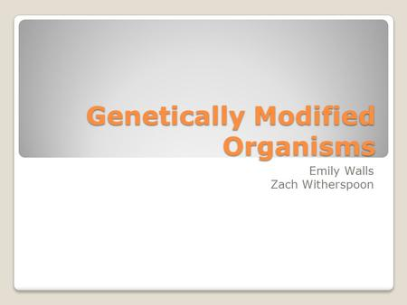 Genetically Modified Organisms Emily Walls Zach Witherspoon.