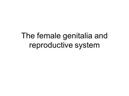 The female genitalia and reproductive system