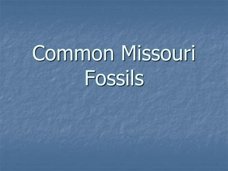 Common Missouri Fossils. Trilobites Trilobites are extinct sea creatures that were one of the first forms of life on earth. They ruled the world before.