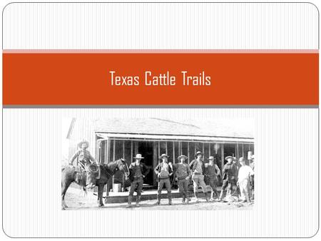 Texas Cattle Trails.
