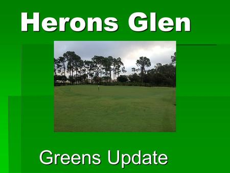 Herons Glen Greens Update. History  Typical life span of a green in South Florida with Ultra dwarf Bermudagrass is 10 – 15 years.  Herons Glens Greens.