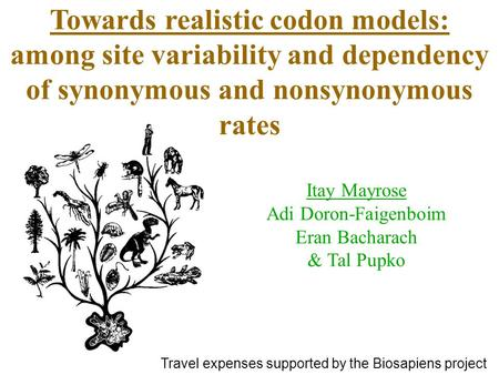 Towards realistic codon models: among site variability and dependency of synonymous and nonsynonymous rates Itay Mayrose Adi Doron-Faigenboim Eran Bacharach.