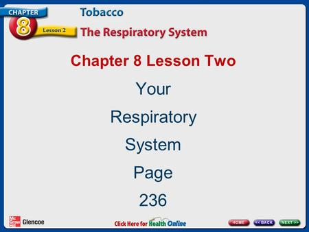 Your Respiratory System Page 236