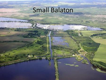 Small Balaton. Small-Balaton, as an extensive, uninterrupted wetland habitat represents a unique value in Europe. Small Balaton is part of the Balaton.