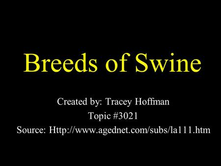 Breeds of Swine Created by: Tracey Hoffman Topic #3021