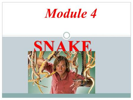 SNAKE MAN Module 4. Warm-up 1-Look at the key words and decide which people have to travel a lot Key words : Jobs Key words : Jobs.