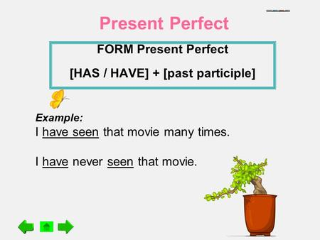 FORM Present Perfect [HAS / HAVE] + [past participle]