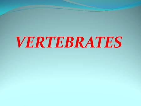 Vertibrates