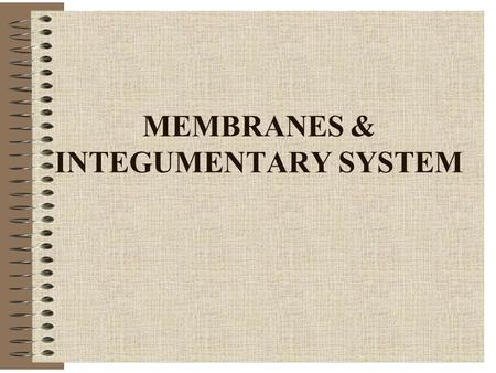 MEMBRANES & INTEGUMENTARY SYSTEM. MEMBRANES Cover surfaces, organs Line body cavities Protect, lubricate Two categories -Epithelial tissue membranes -Connective.