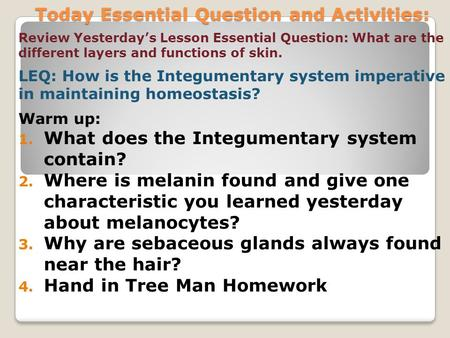 Today Essential Question and Activities: Review Yesterday's Lesson Essential Question: What are the different layers and functions of skin. LEQ: How is.