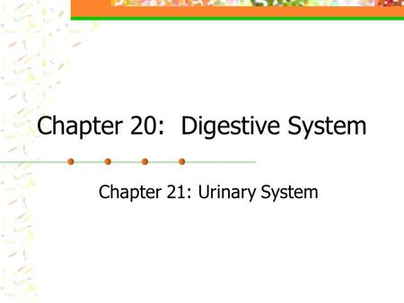 Chapter 20: Digestive System Chapter 21: Urinary System.