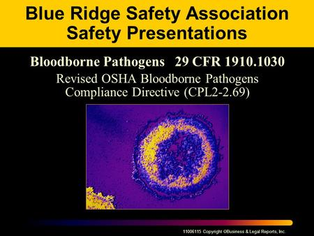 11006115 Copyright  Business & Legal Reports, Inc. Blue Ridge Safety Association Safety Presentations Bloodborne Pathogens 29 CFR 1910.1030 Revised OSHA.