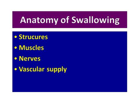 Anatomy of Swallowing Strucures Muscles Nerves Vascular supply.