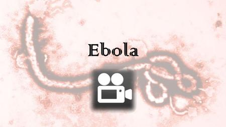 Ebola. What is Ebola?? Ebola is a rare and deadly disease caused by the infection of the Ebola Virus (5 strands) Ebola viruses are found in several African.