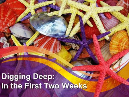Digging Deep: In the First Two Weeks. Get Ready Traffic Digging Deep Detours.
