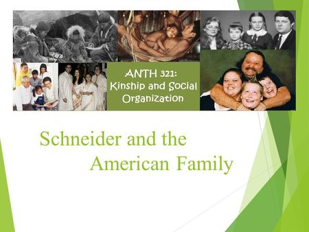 Schneider and the American Family