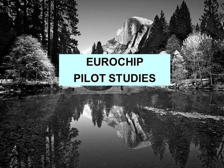 EUROCHIP PILOT STUDIES. Collection of detailed clinical information for specific tumours Describing and comparing care in representative samples of cancer.