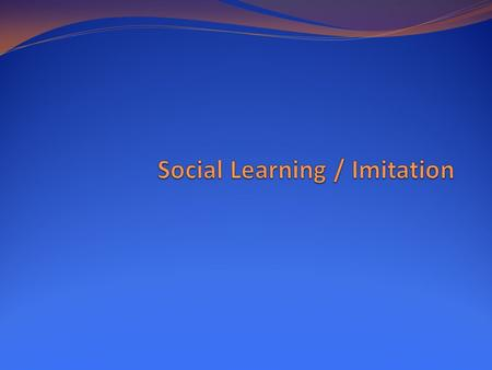 Social Learning / Imitation