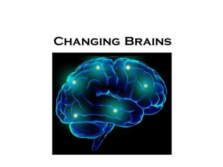 Changing Brains. The Teenage Brain Our youth now love luxury. They have bad manners, contempt for authority; they show disrespect for their elders and.