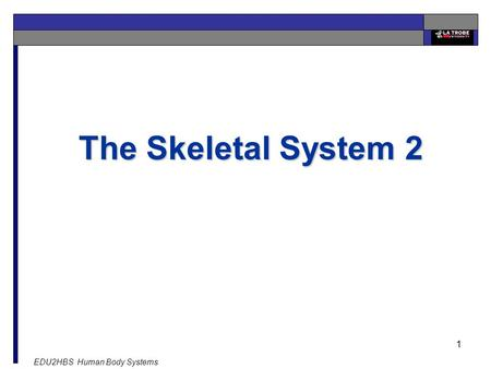 EDU2HBS Human Body Systems 1 The Skeletal System 2.