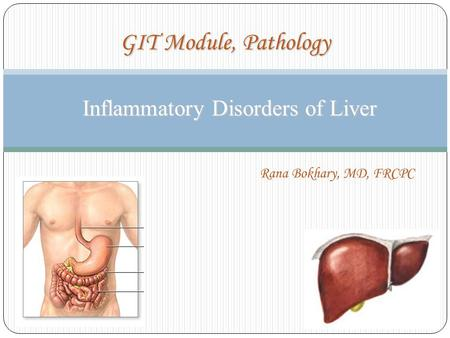 Inflammatory Disorders of Liver Inflammatory Disorders of Liver GIT Module, Pathology Rana Bokhary, MD, FRCPC.