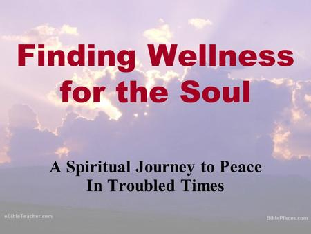 Finding Wellness for the Soul A Spiritual Journey to Peace In Troubled Times.