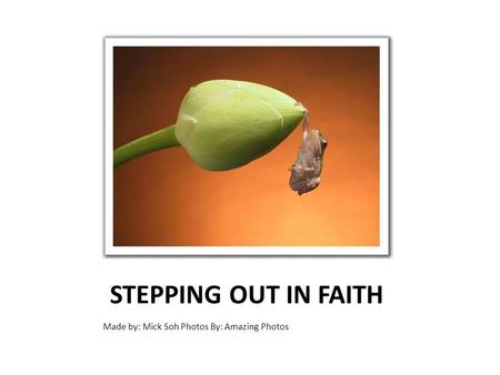 STEPPING OUT IN FAITH Made by: Mick Soh Photos By: Amazing Photos.