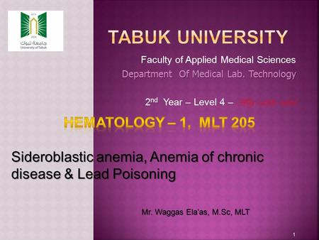 Faculty of Applied Medical Sciences Department Of Medical Lab. Technology 2 nd Year – Level 4 – AY 1433-1434 1 Mr. Waggas Ela'as, M.Sc, MLT.