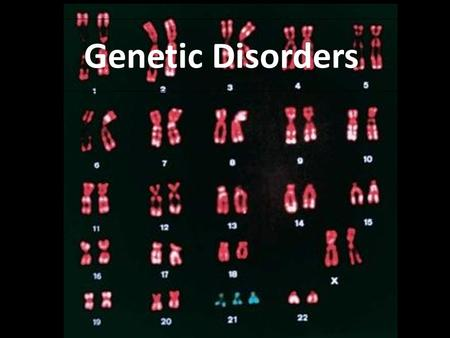 Genetic Disorders. 5 Categories Autosomal Dominant Autosomal Recessive Sex-Linked Chromosomal Co-Dominant.