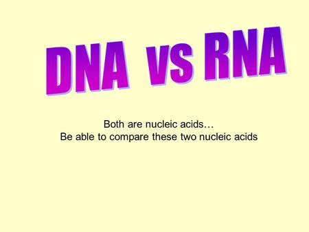 Both are nucleic acids… Be able to compare these two nucleic acids.