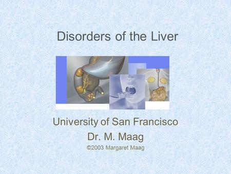 Disorders of the Liver University of San Francisco Dr. M. Maag ©2003 Margaret Maag.