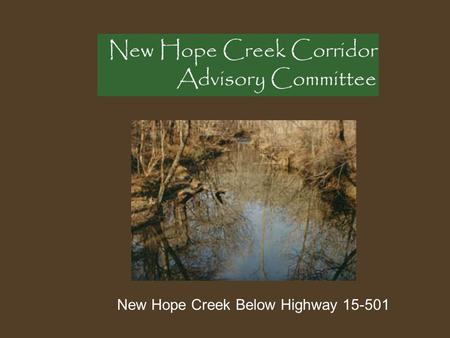 New Hope Creek Below Highway 15-501. Executive Summary The Durham County Inventory of Important Natural Areas, Plants and Wildlife North Carolina Natural.
