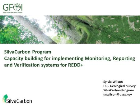SilvaCarbon Program Capacity building for implementing Monitoring, Reporting and Verification systems for REDD+ Sylvia Wilson U.S. Geological Survey SilvaCarbon.