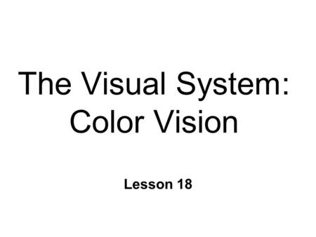 The Visual System: Color Vision Lesson 18. The Trichromatic Theory n Young-Helmholtz (1802) n 3 types of color receptors l Cones n Differential sensitivity.