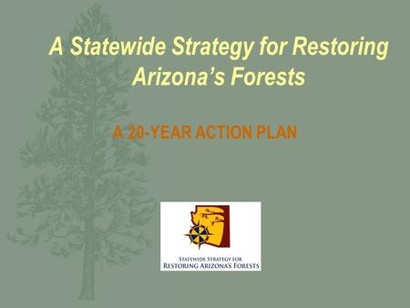 A Statewide Strategy for Restoring Arizona's Forests A 20-YEAR ACTION PLAN.