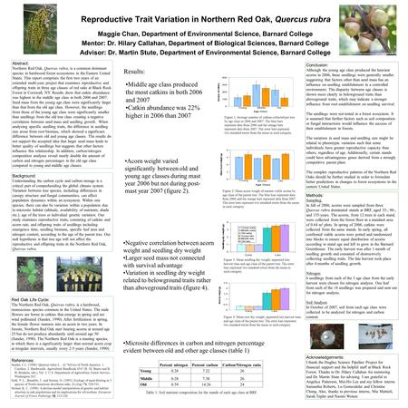 Reproductive Trait Variation in Northern Red Oak, Quercus rubra Maggie Chan, Department of Environmental Science, Barnard College Mentor: Dr. Hilary Callahan,