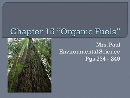 Mrs. Paul Environmental Science Pgs 234 - 249.  Many forms of energy to meet the needs of people on Earth. Heat, light, energy, mechanical energy, chemical.
