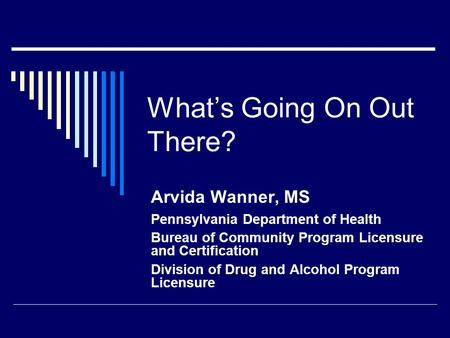 What's Going On Out There? Arvida Wanner, MS Pennsylvania Department of Health Bureau of Community Program Licensure and Certification Division of Drug.