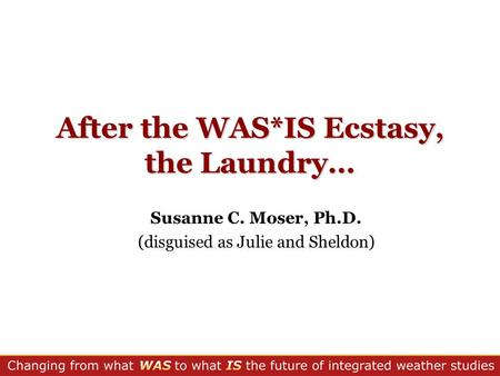 After the WAS*IS Ecstasy, the Laundry… Susanne C. Moser, Ph.D. (disguised as Julie and Sheldon)