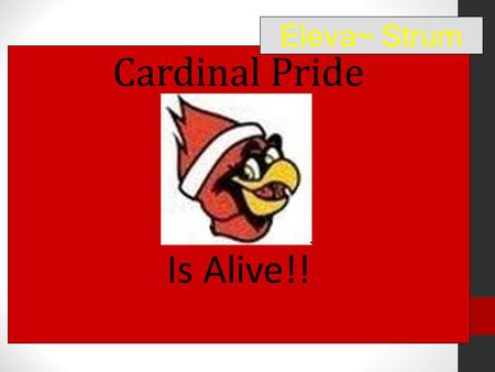 Cardinal Pride Is Alive!! Eleva~ Strum. Be Responsible Be Respectful Be Safe PBIS.