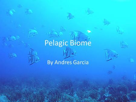 Pelagic Biome By Andres Garcia. Location The pelagic biome is the marine ocean system The pelagic biome covers about 70 percent of the world and is the.