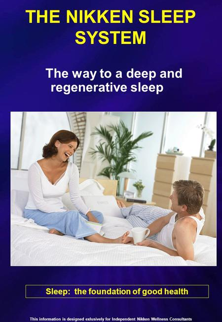 Nikken Magnetic Pillow