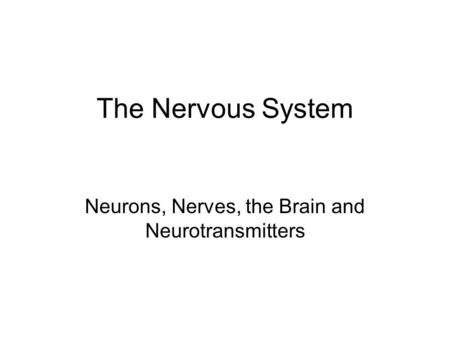 The Nervous System Neurons, Nerves, the Brain and Neurotransmitters.