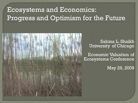 Sabina L. Shaikh University of Chicago Economic Valuation of Ecosystems Conference May 29, 2009 Ecosystems and Economics: Progress and Optimism for the.