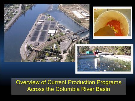 Overview of Current Production Programs Across the Columbia River Basin.