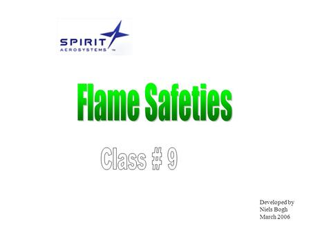 Developed by Niels Bogh March 2006. Objective At the end of the class you will be able to explain the differences of the three main types of flame safety.