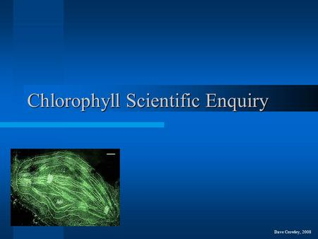Chlorophyll Scientific Enquiry Dave Crowley, 2008.