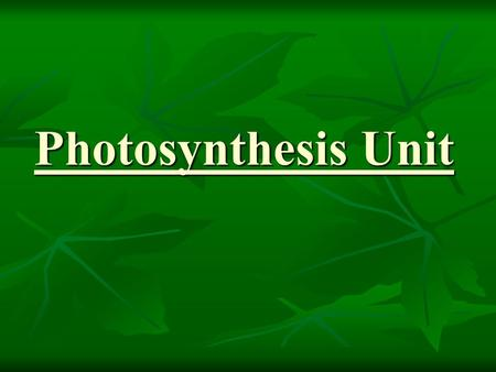 Photosynthesis Unit. Energy Flow through an Ecosystem.