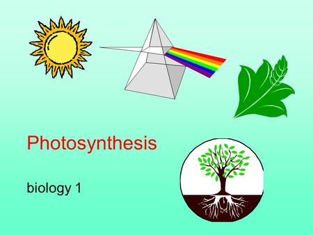 Photosynthesis biology 1. Photosynthesis plays a key role in photo-autotrophic existence Photosynthesis is a redox process, occurring in chloroplasts,