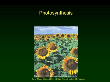 Raven - Johnson - Biology: 6th Ed. - All Rights Reserved - McGraw Hill Companies Photosynthesis Copyright © McGraw-Hill Companies Permission required for.